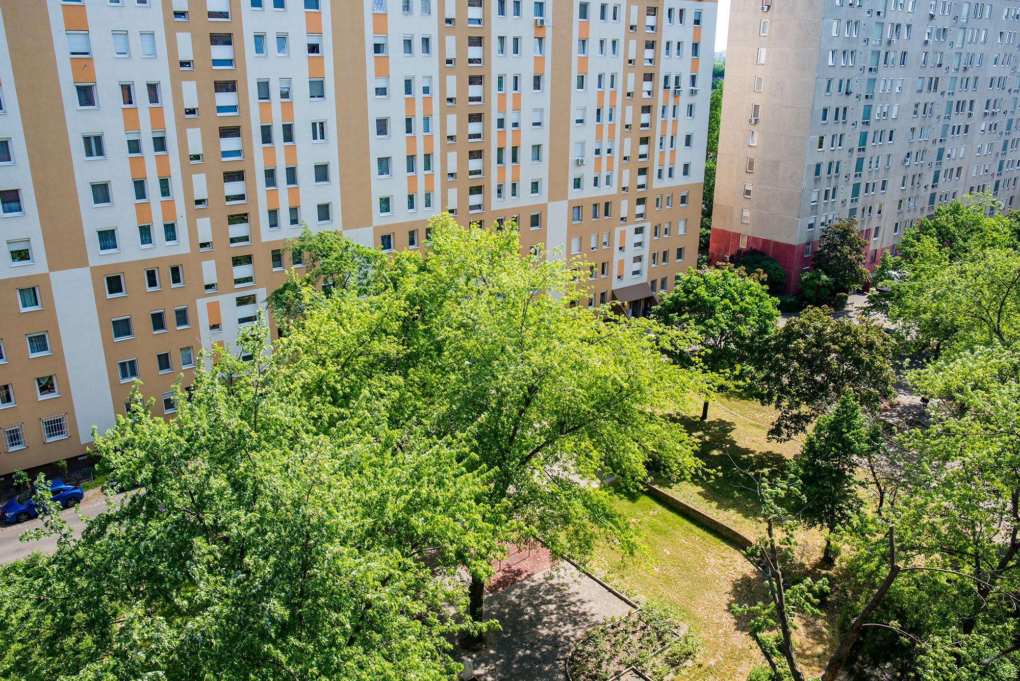19. kerület, Kazinczy utca  8.