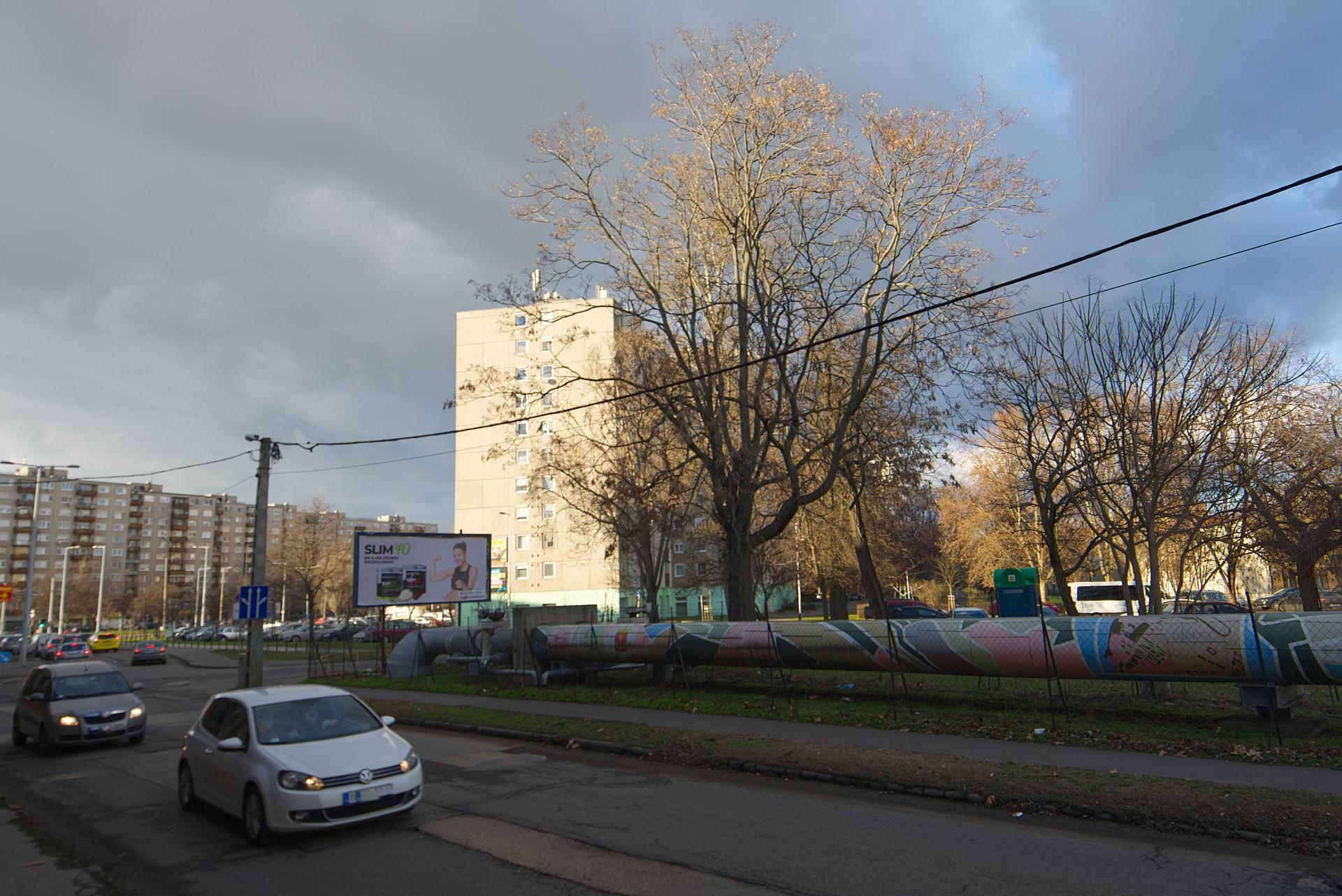 District 4, Tó utca 7.